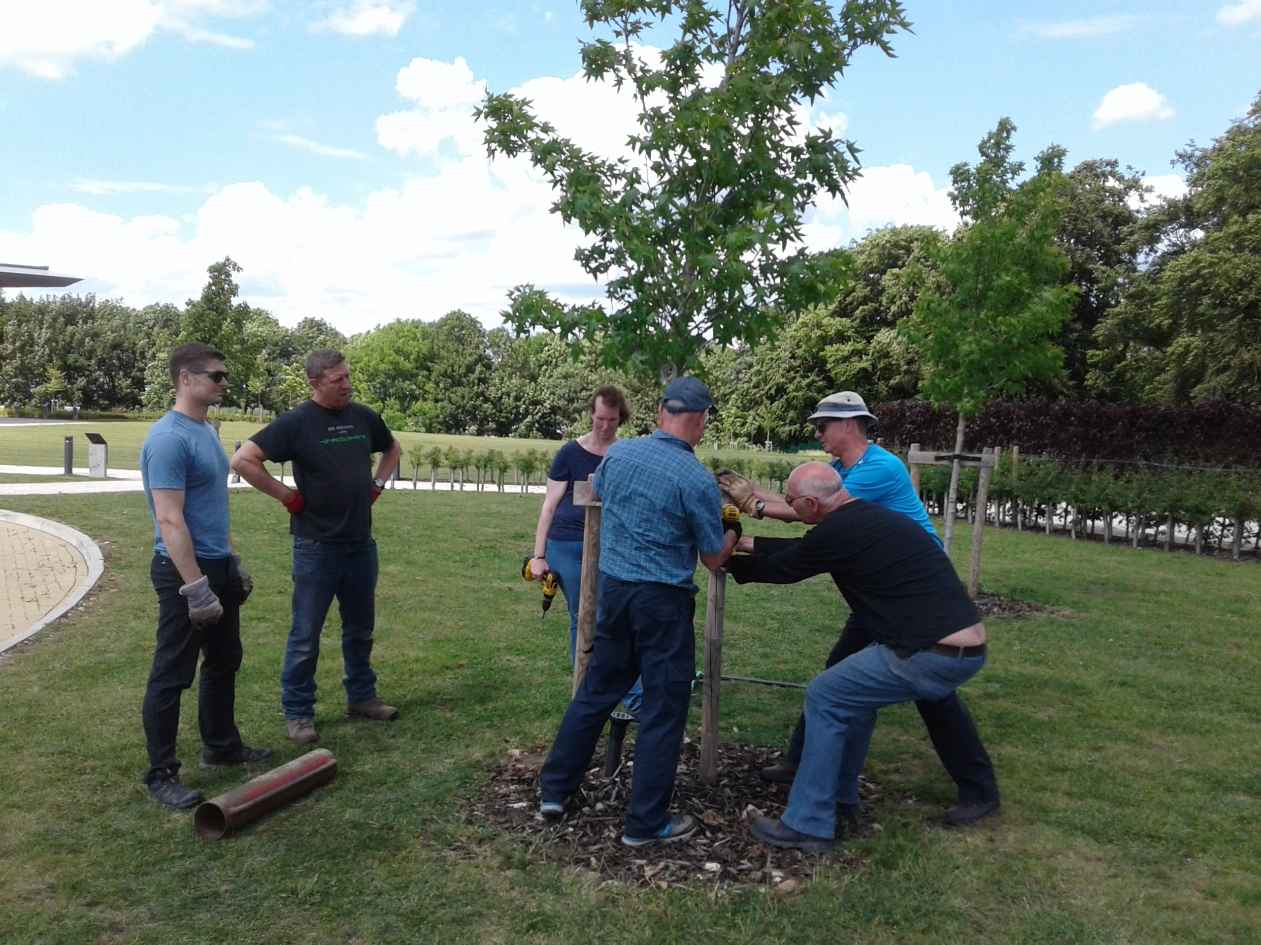 Volunteers planting trees in the IBCC gardens